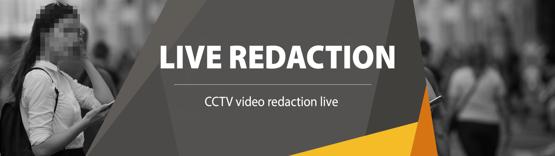 Video Redaction Software Live
